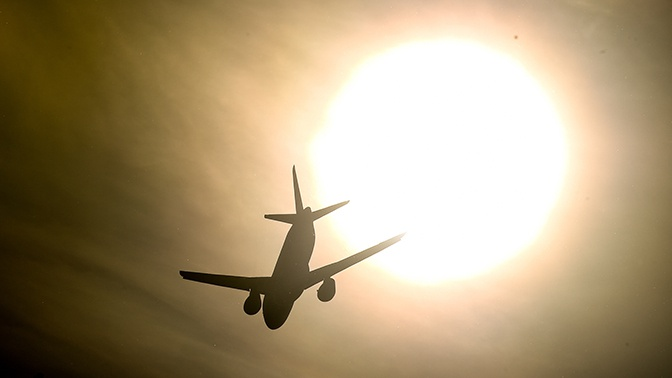 Орнитологи подсчитали количество ЧП с самолетами из-за птиц