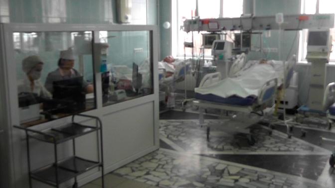 Хозяин маслобойни под Ульяновском рассказал, откуда появились отравленные семечки
