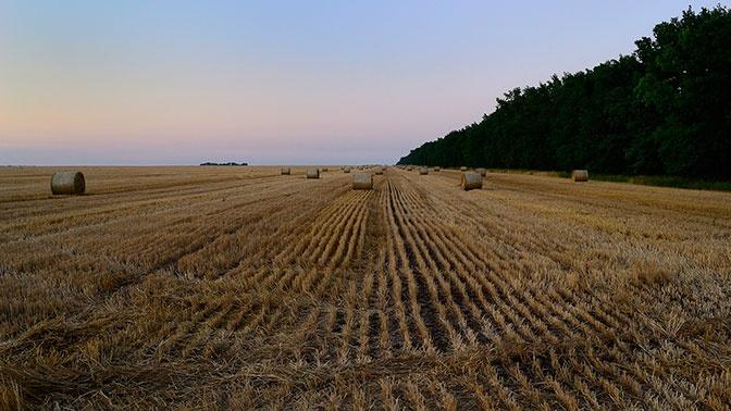 Власти Украины пообещали конфисковать купленные россиянами земли