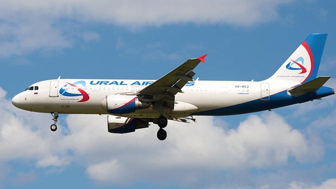 Летевший из Москвы пассажирский самолет столкнулся со стаей птиц