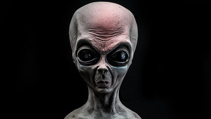 Илон Маск заявил, что инопланетян не существует