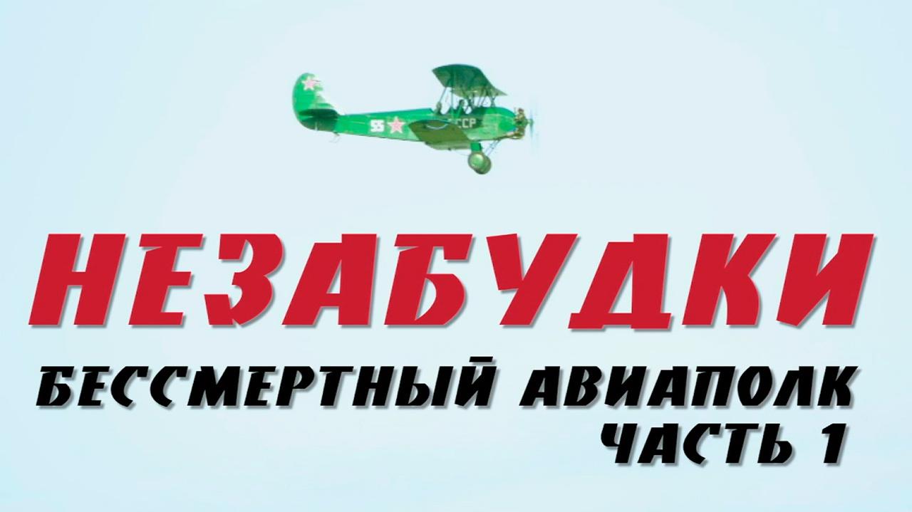Д/с «Незабудки. Бессмертный авиаполк». 1-я серия