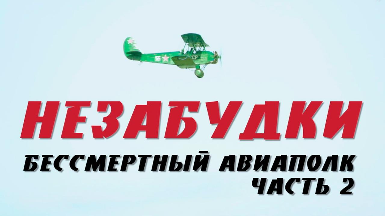 Д/с «Незабудки. Бессмертный авиаполк». 2-я серия