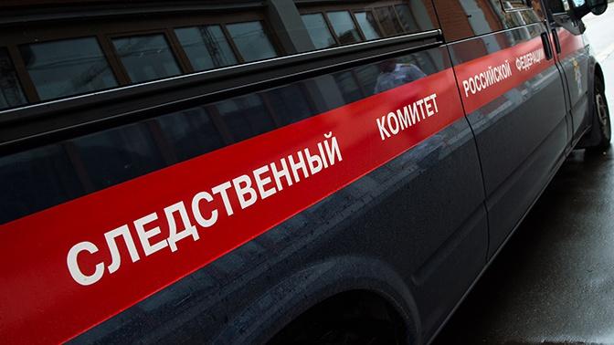 Женщина, которая в новогоднюю ночь увела девочку из квартиры в Москве, объяснила свой поступок