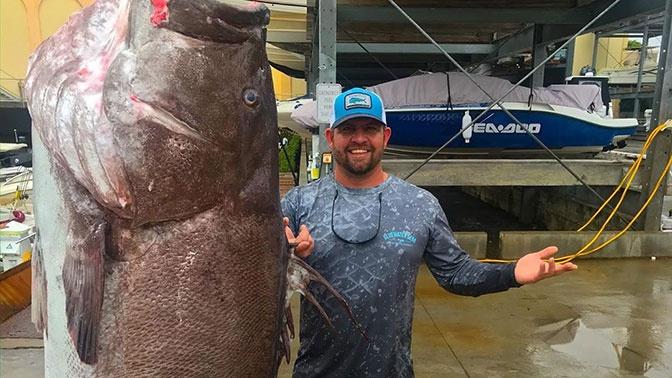 Рыба моей мечты: в США поймали 50-летнего окуня весом 158 кг