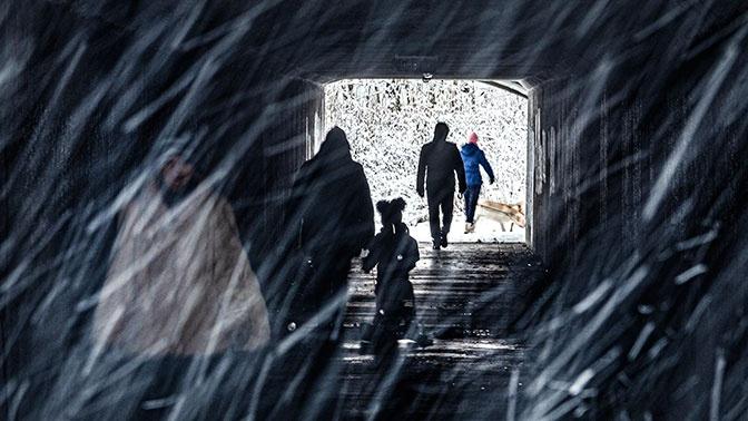 Желтый уровень опасности объявлен в Москве из-за ветра