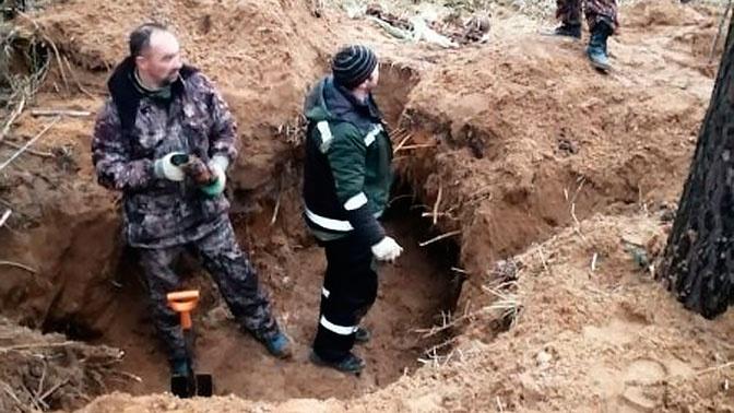 Под Псковом найдены уничтоженные фашистами в годы ВОВ останки мирных жителей