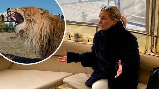 «Смертельно опасно»: укушенная львом в крымском парке туристка хочет не арестов, а наведения порядка