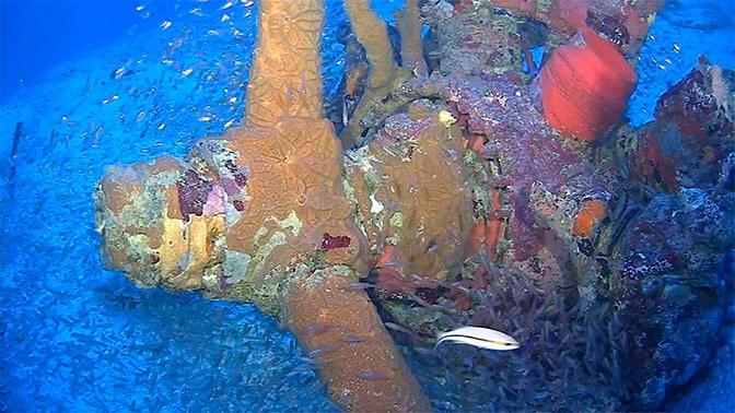 На дне лагуны в Микронезии обнаружены самолеты ВВС США времен войны