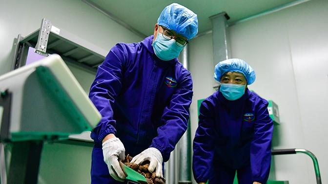 Минздрав Норвегии объявил о первом инфицированном коронавирусом