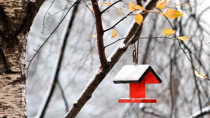 Синоптик раскрыл причины резкого похолодания в части страны