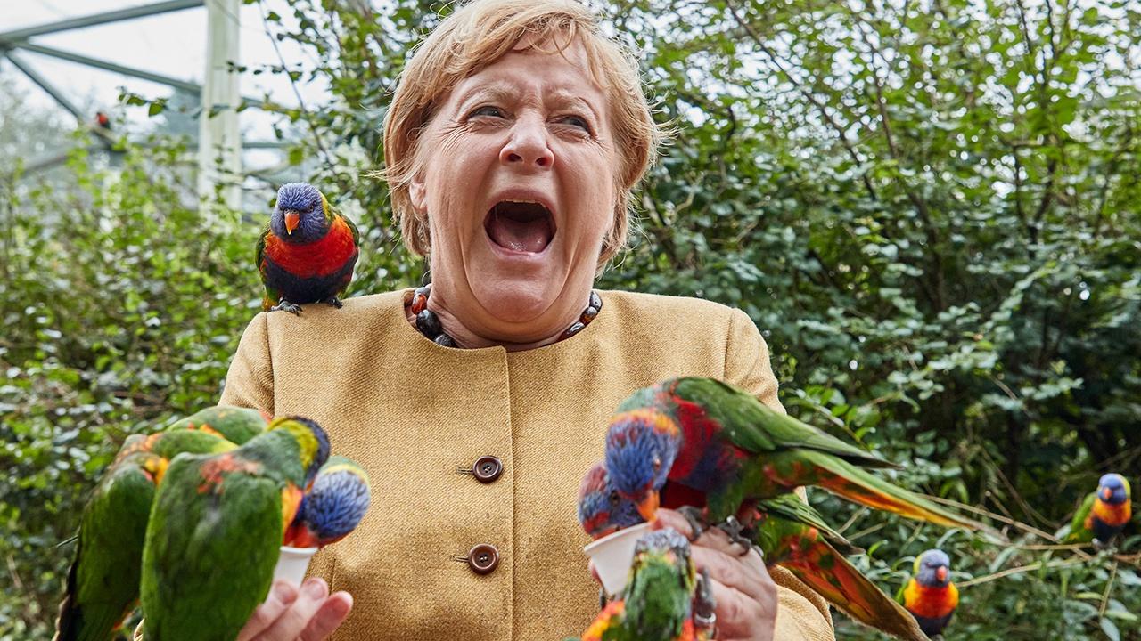 Меркель в птичьем парке поклевали попугаи